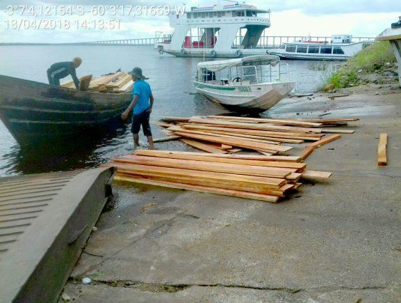Fiscais do Ipaam apreendem madeira retirada ilegalmente da RDS no rio Negro