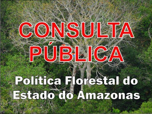 Consulta Pública - Política Florestal do Amazonas