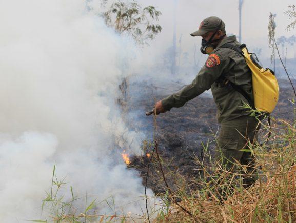 Operação Cielo mostra presença do Estado e reduz focos de queimadas na Região Metropolitana de Manaus