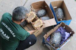 Ipaam deflagra operação contra descarte irregular de resíduos em Manaus