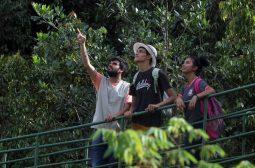 Fim de semana no Parque Sumaúma terá trilhas guiadas e cine ambiental